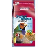 pájaros exóticos prestige