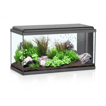 Acuario advance Led de Aquatlantis