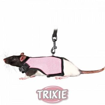 set roedores/ratas arnés nylon