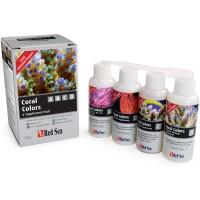 coral colors A, B, C y D . 4 x 100 ml