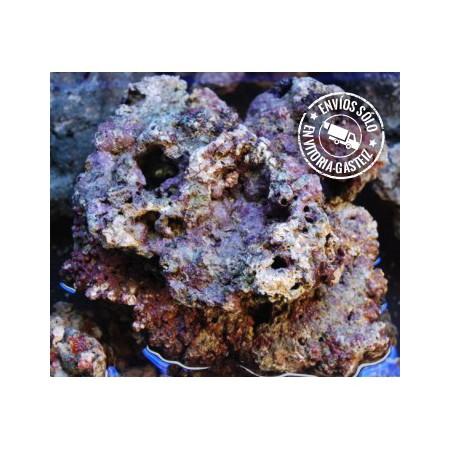 Roca viva premium curada para acuarios marinos for Accesorios para acuarios marinos
