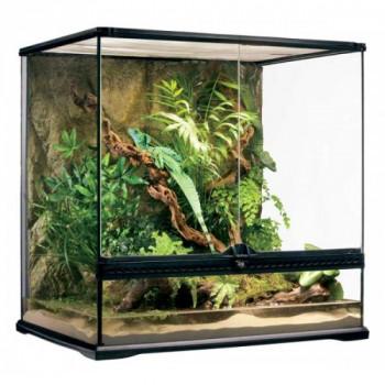 Terrario de cristal para reptiles