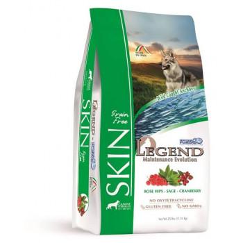Legend Skin