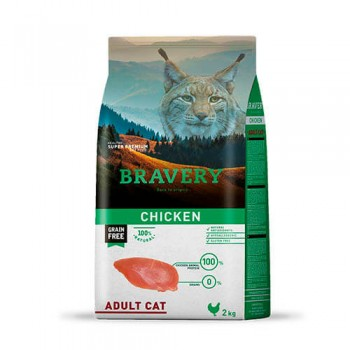 Bravery Chicken Gato Adulto