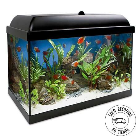Acuario Aqua LED Pro 45 litros