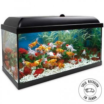 Acuario Aqua LED Pro 100 litros