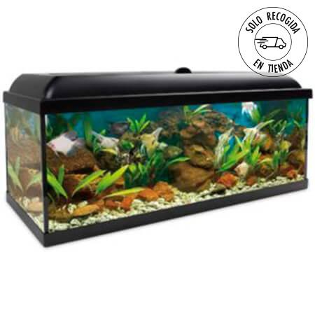 Acuario Aqua LED Pro 240 litros